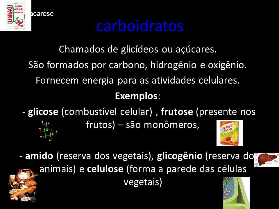carboidratos Chamados de glicídeos ou açúcares.