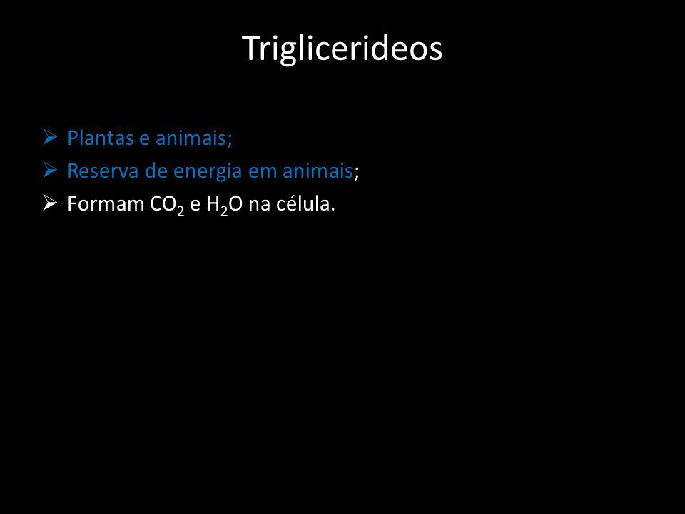 Triglicerideos Plantas e animais; Reserva de energia em animais;