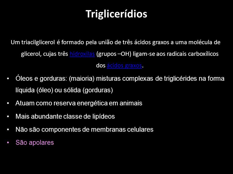 Triglicerídios