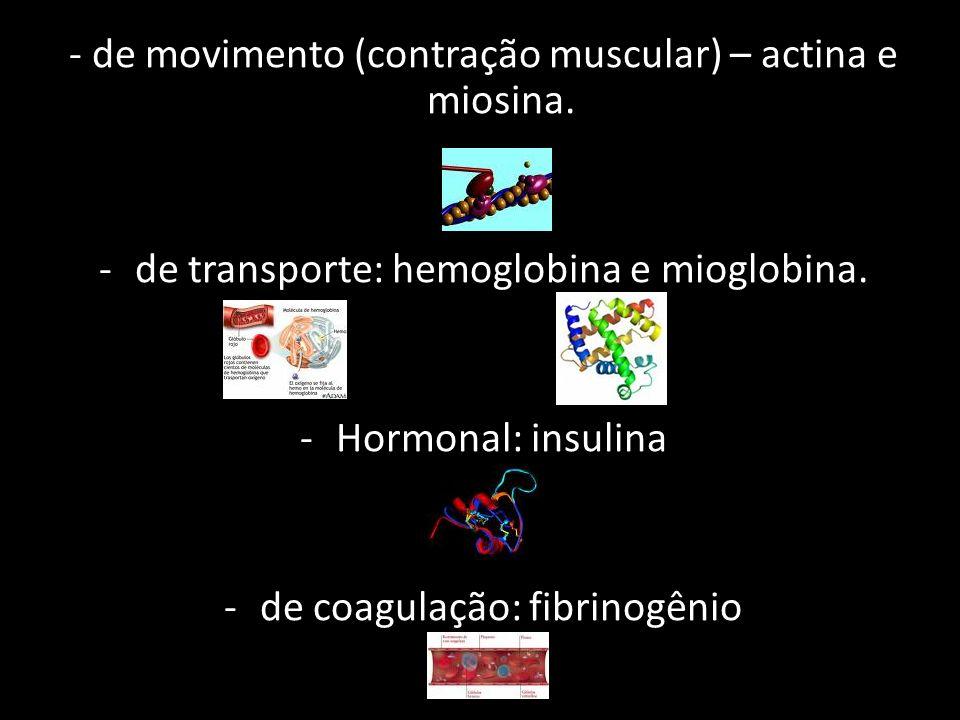 - de movimento (contração muscular) – actina e miosina.