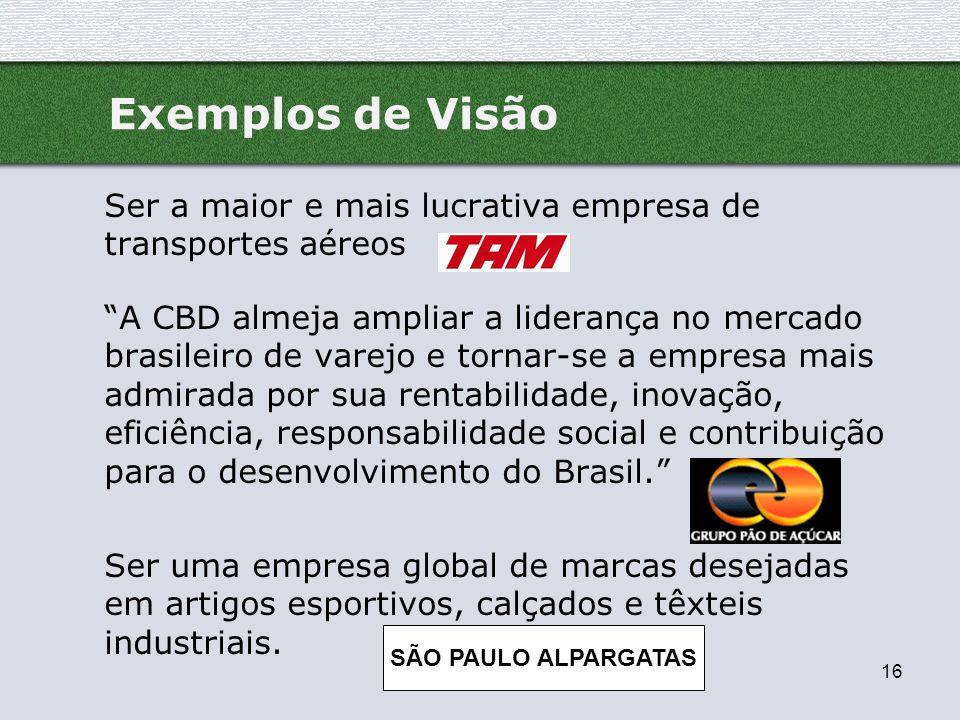 Exemplos de Visão Ser a maior e mais lucrativa empresa de transportes aéreos.