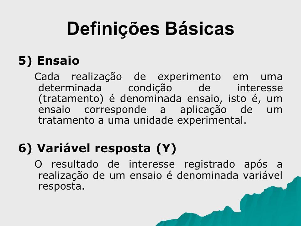 Definições Básicas 5) Ensaio