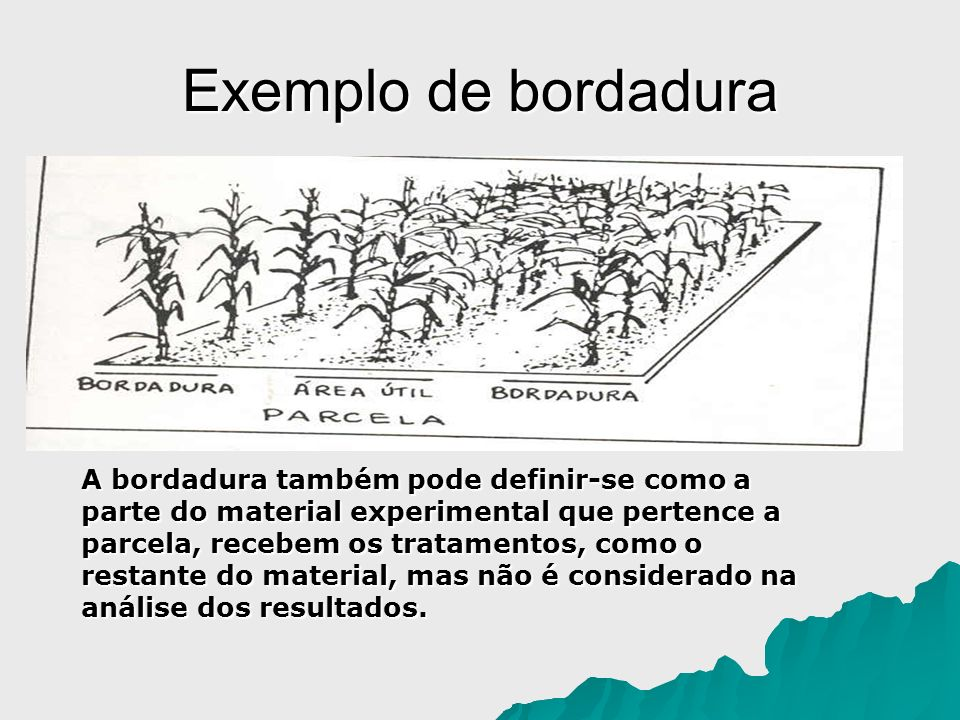 Exemplo de bordadura