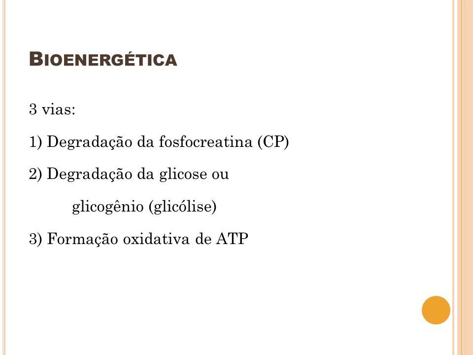Bioenergética 3 vias: 1) Degradação da fosfocreatina (CP) 2) Degradação da glicose ou glicogênio (glicólise) 3) Formação oxidativa de ATP