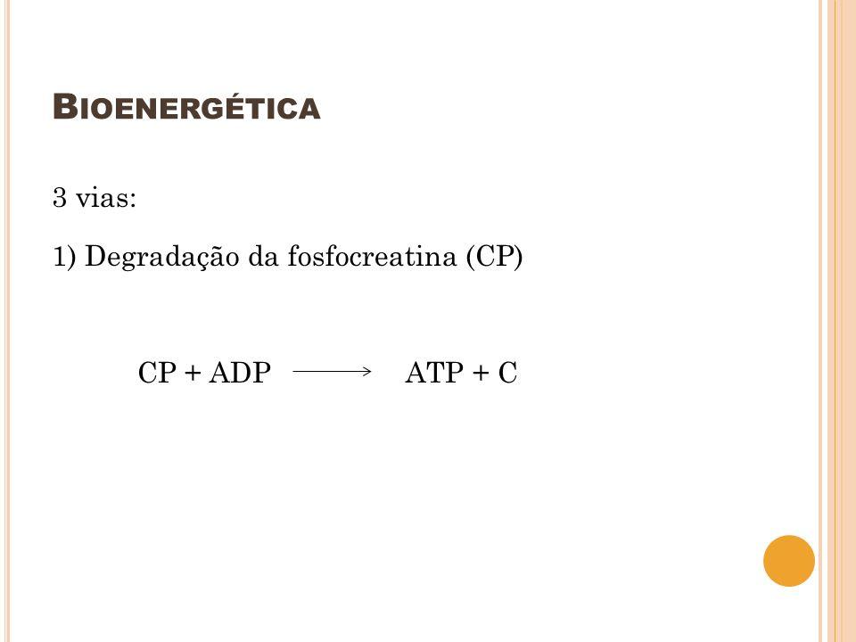 Bioenergética 3 vias: 1) Degradação da fosfocreatina (CP) CP + ADP ATP + C