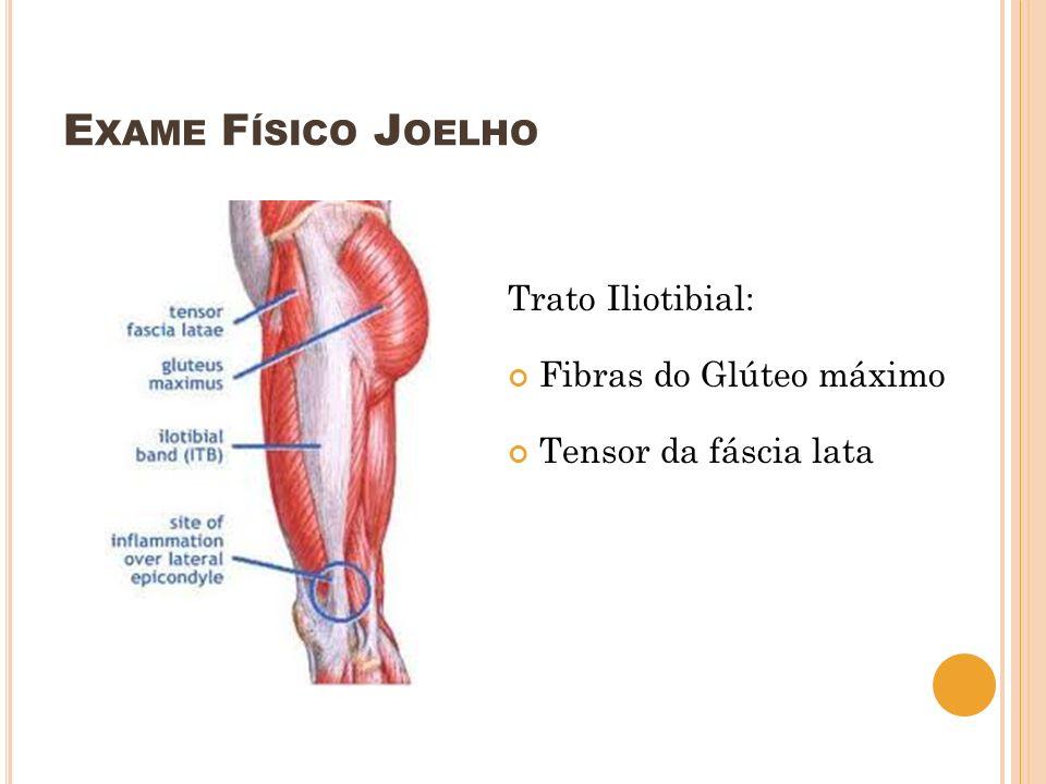 Exame Físico Joelho Trato Iliotibial: Fibras do Glúteo máximo