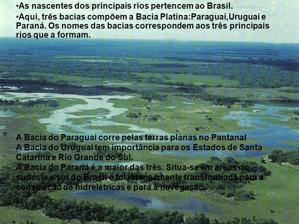 As nascentes dos principais rios pertencem ao Brasil.