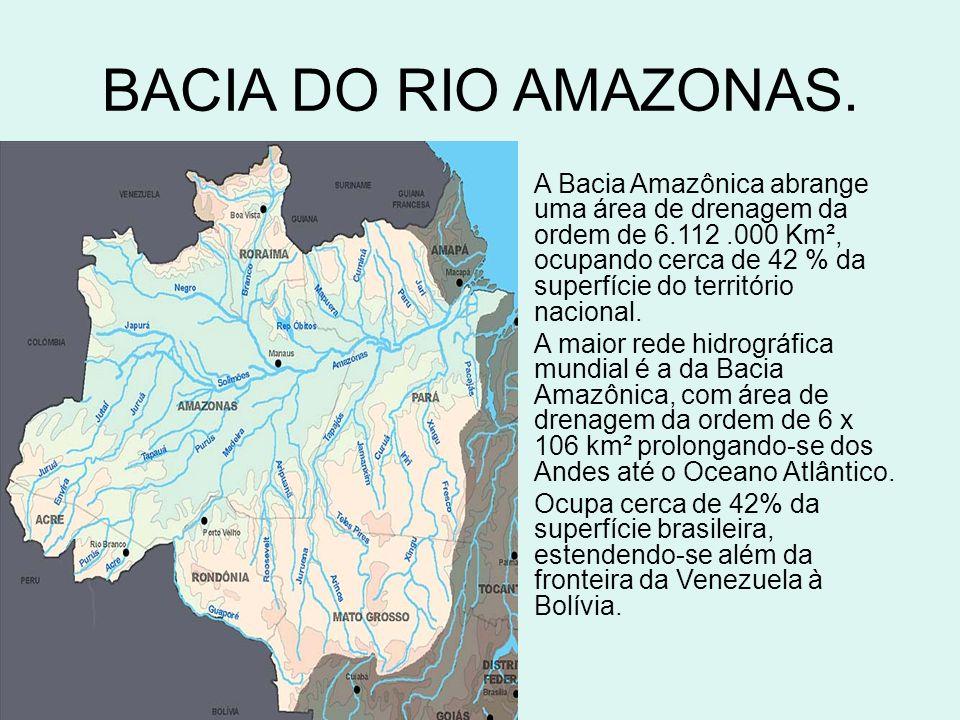 BACIA DO RIO AMAZONAS.