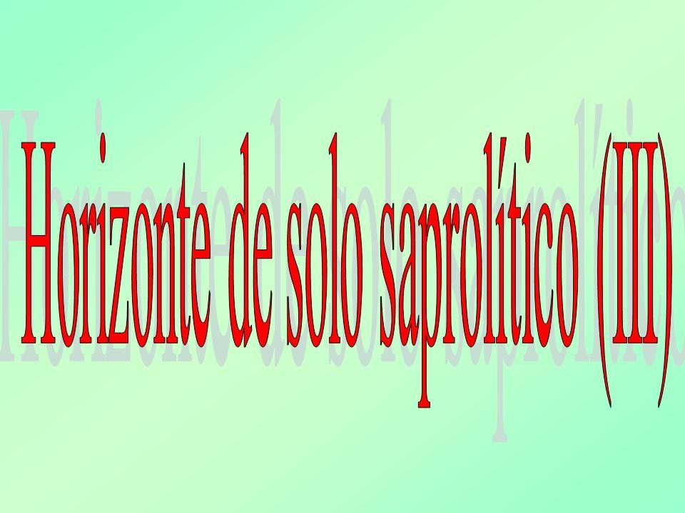 Horizonte de solo saprolítico (III)