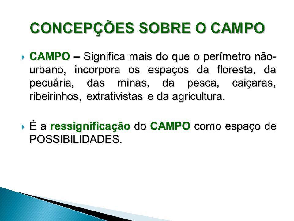 CONCEPÇÕES SOBRE O CAMPO