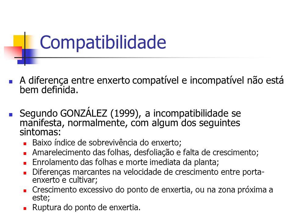 Compatibilidade A diferença entre enxerto compatível e incompatível não está bem definida.