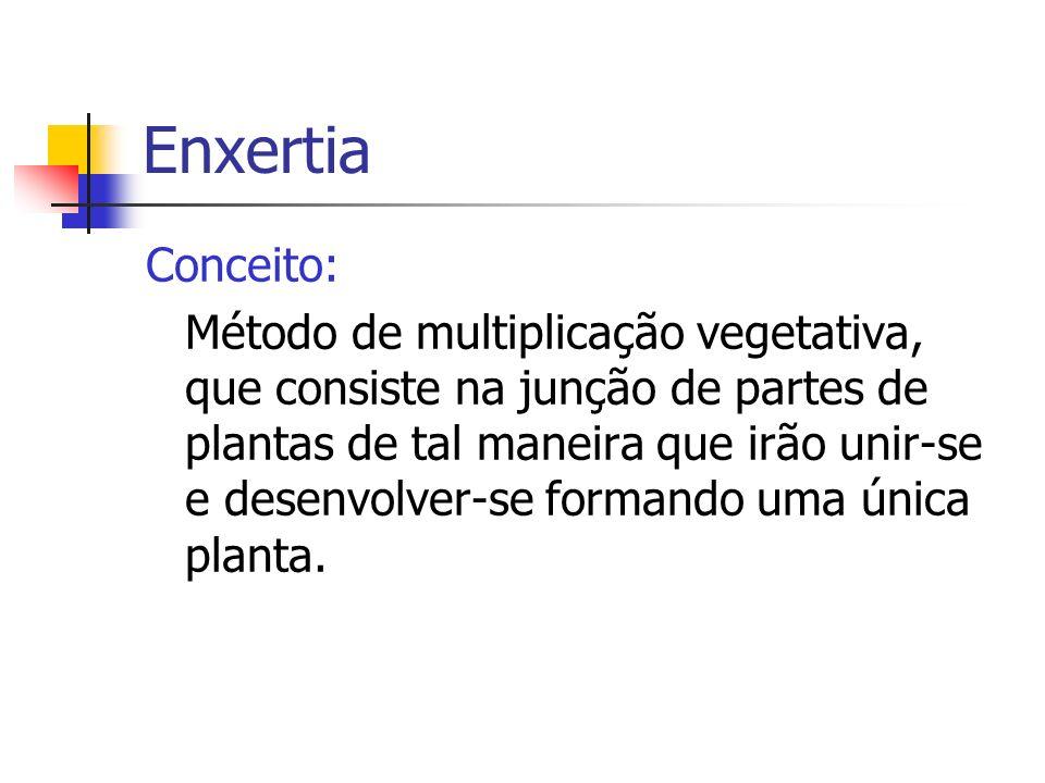 Enxertia Conceito: