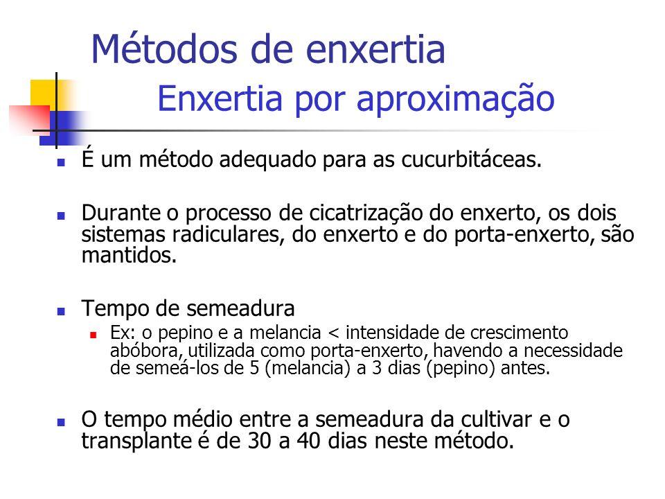Métodos de enxertia Enxertia por aproximação