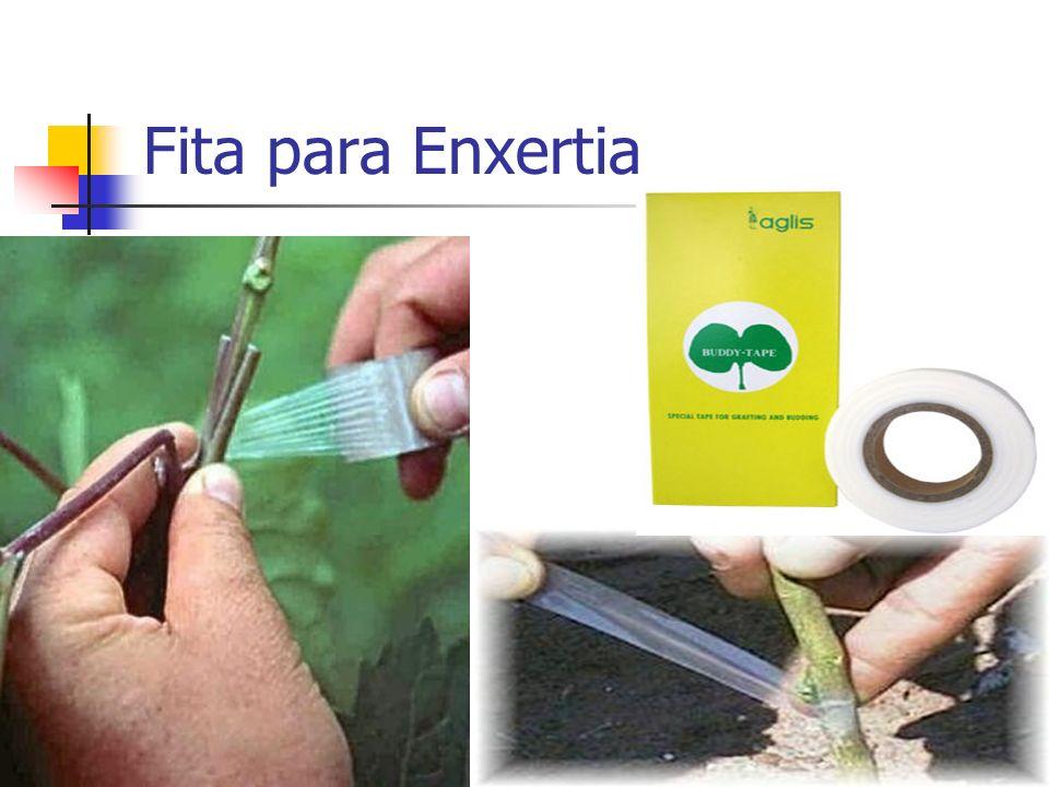 Fita para Enxertia