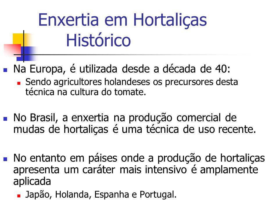 Enxertia em Hortaliças Histórico