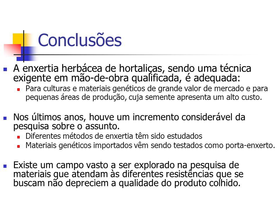 Conclusões A enxertia herbácea de hortaliças, sendo uma técnica exigente em mão-de-obra qualificada, é adequada: