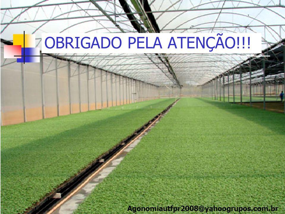OBRIGADO PELA ATENÇÃO!!! Agonomiautfpr2008@yahoogrupos.com.br