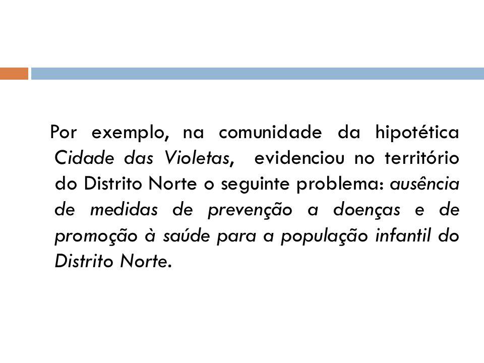 Por exemplo, na comunidade da hipotética Cidade das Violetas, evidenciou no território do Distrito Norte o seguinte problema: ausência de medidas de prevenção a doenças e de promoção à saúde para a população infantil do Distrito Norte.