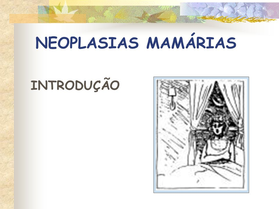 NEOPLASIAS MAMÁRIAS INTRODUÇÃO