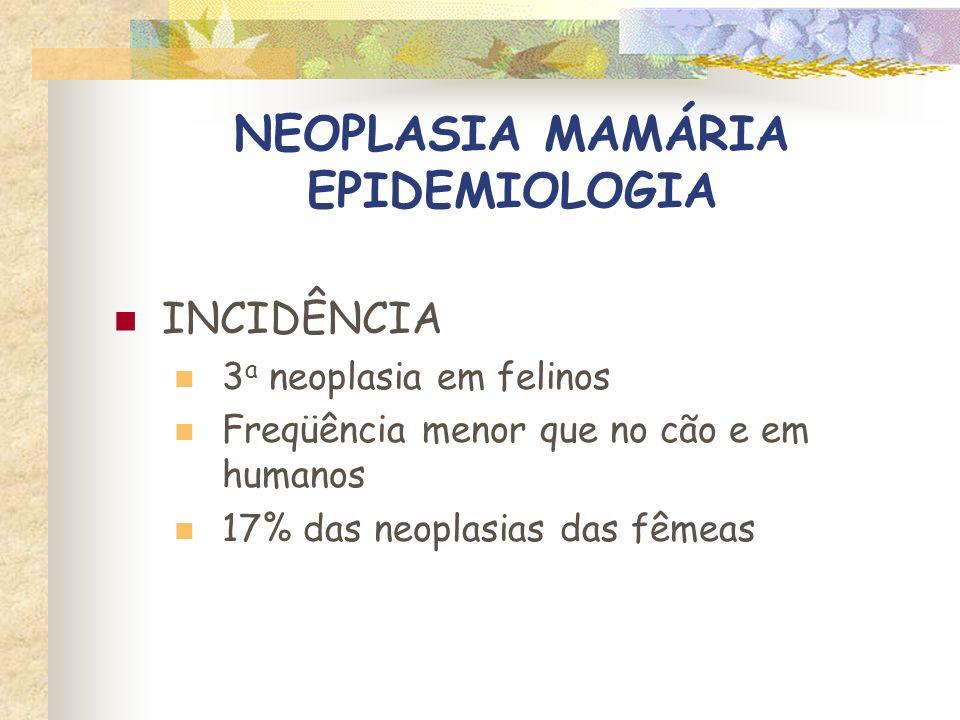 NEOPLASIA MAMÁRIA EPIDEMIOLOGIA