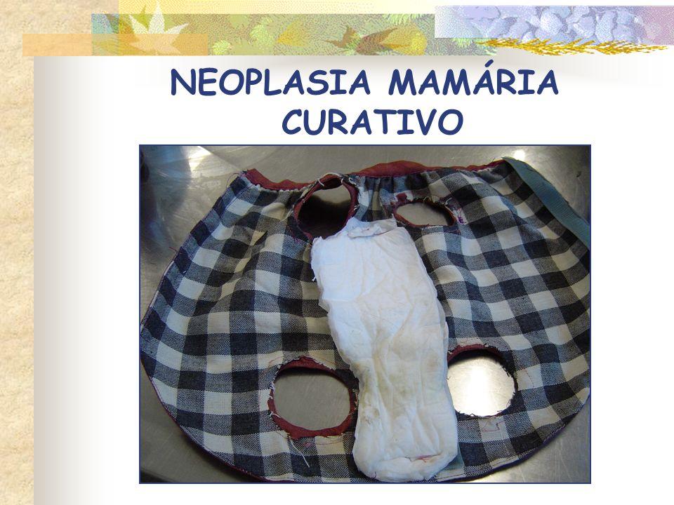 NEOPLASIA MAMÁRIA CURATIVO