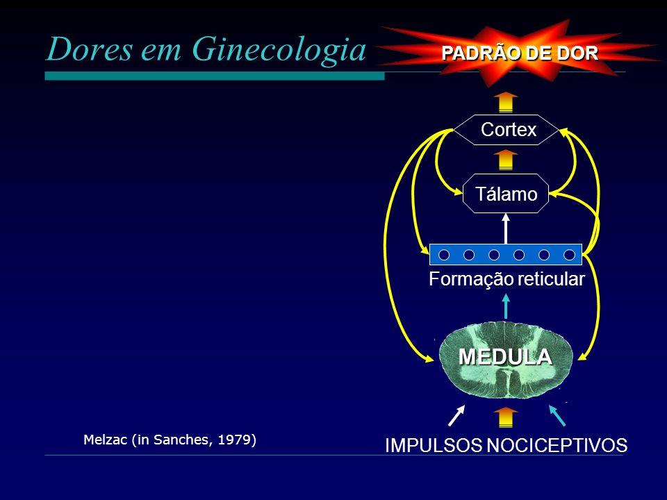Dores em Ginecologia MEDULA PADRÃO DE DOR Cortex Tálamo
