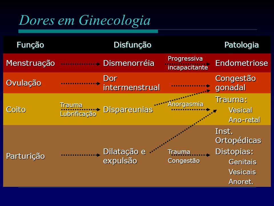 Dores em Ginecologia Função Disfunção Patologia Menstruação
