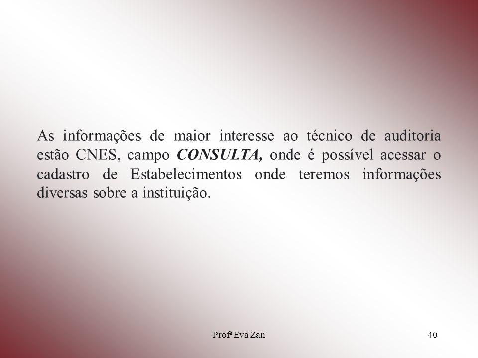 As informações de maior interesse ao técnico de auditoria estão CNES, campo CONSULTA, onde é possível acessar o cadastro de Estabelecimentos onde teremos informações diversas sobre a instituição.