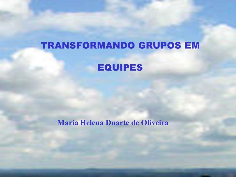 TRANSFORMANDO GRUPOS EM EQUIPES