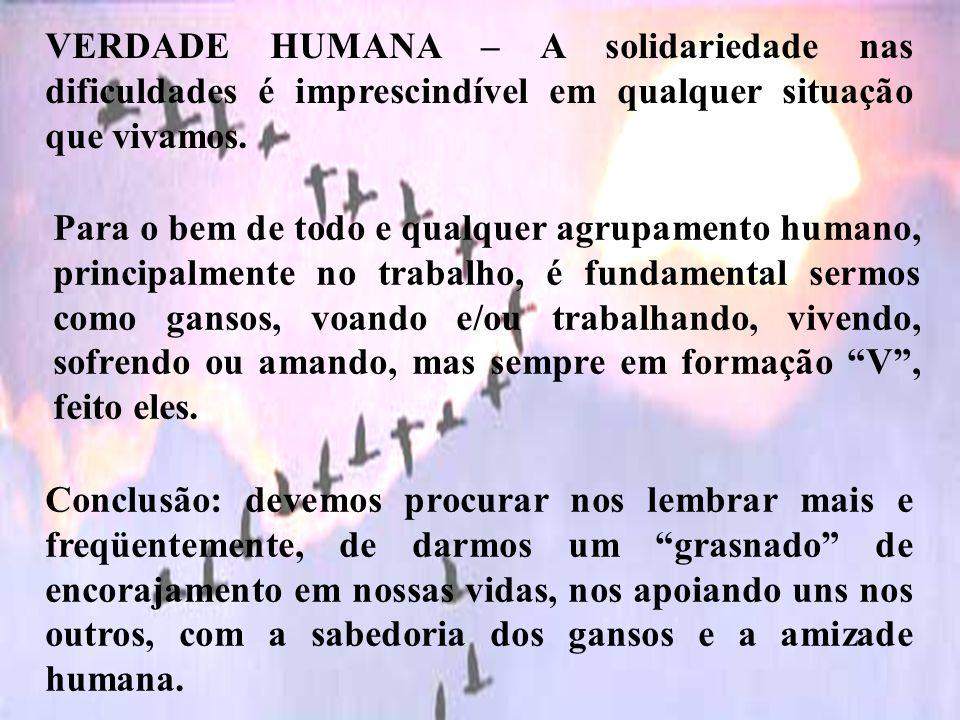 VERDADE HUMANA – A solidariedade nas dificuldades é imprescindível em qualquer situação que vivamos.