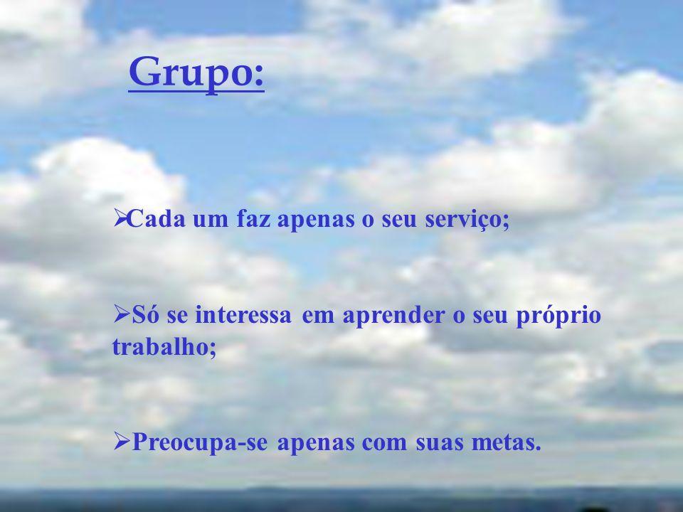 Grupo: Cada um faz apenas o seu serviço;