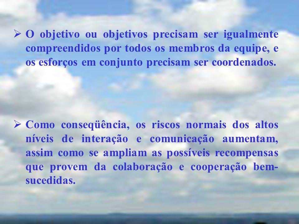 O objetivo ou objetivos precisam ser igualmente compreendidos por todos os membros da equipe, e os esforços em conjunto precisam ser coordenados.