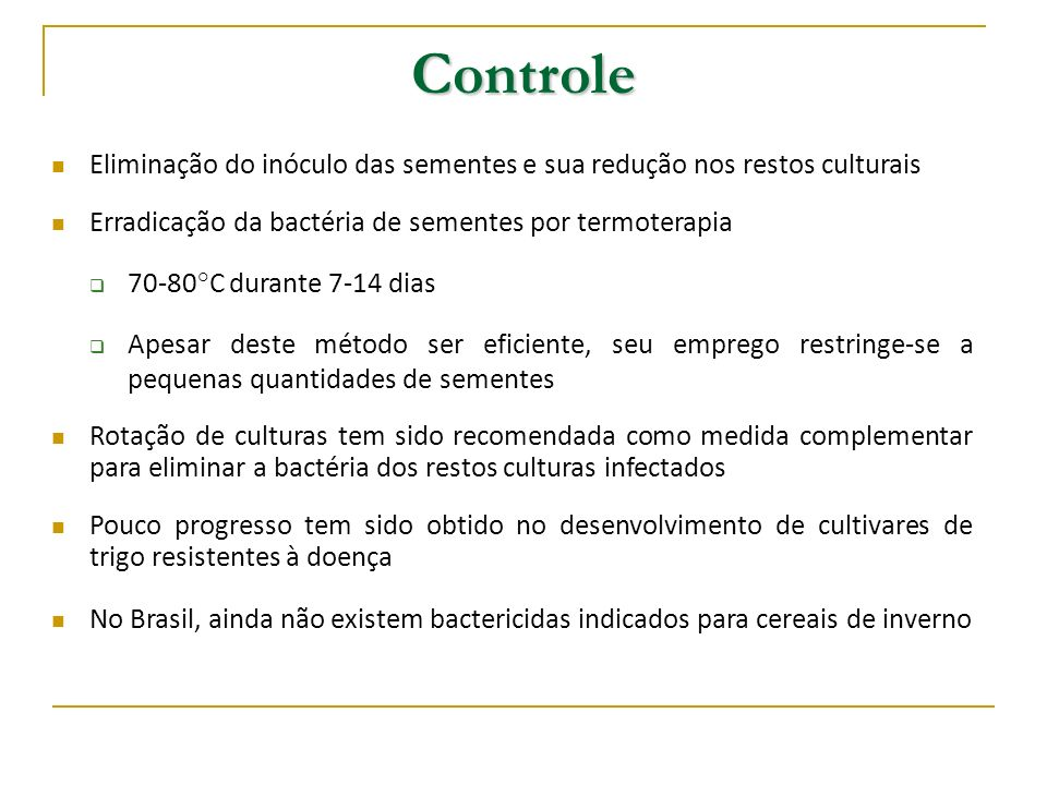 Controle Eliminação do inóculo das sementes e sua redução nos restos culturais. Erradicação da bactéria de sementes por termoterapia.