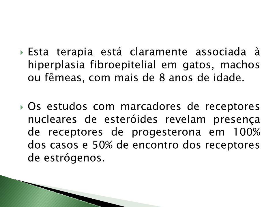 Esta terapia está claramente associada à hiperplasia fibroepitelial em gatos, machos ou fêmeas, com mais de 8 anos de idade.