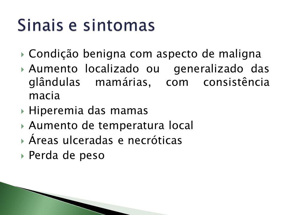 Sinais e sintomas Condição benigna com aspecto de maligna