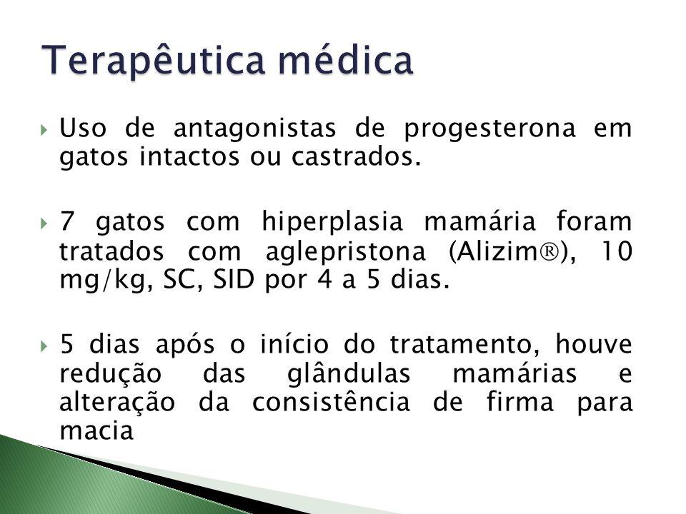 Terapêutica médica Uso de antagonistas de progesterona em gatos intactos ou castrados.