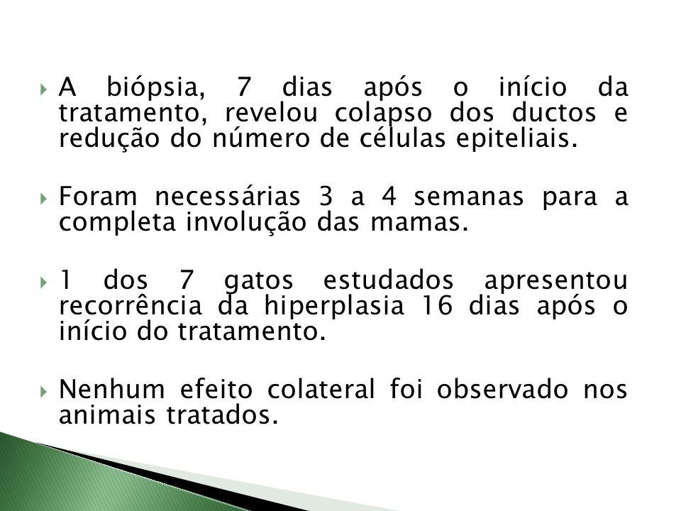 A biópsia, 7 dias após o início da tratamento, revelou colapso dos ductos e redução do número de células epiteliais.