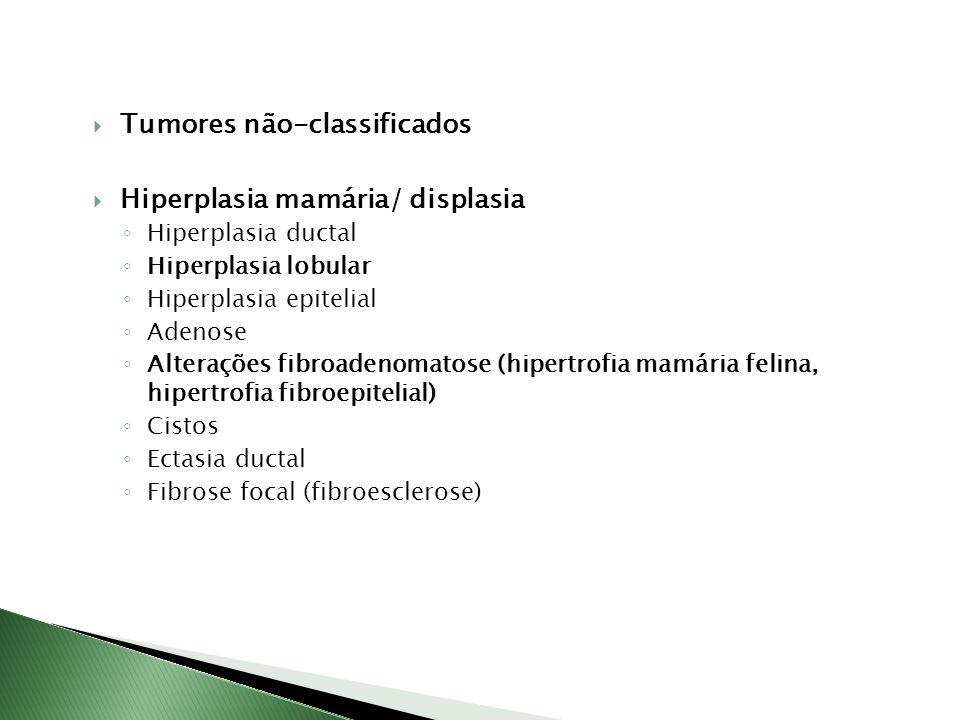 Tumores não-classificados Hiperplasia mamária/ displasia