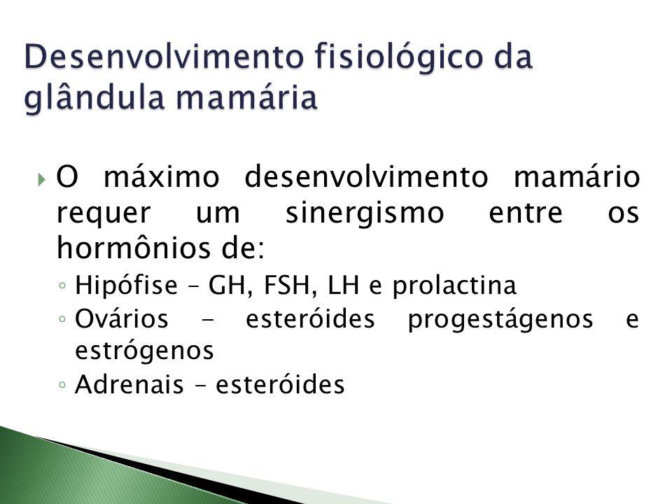 Desenvolvimento fisiológico da glândula mamária