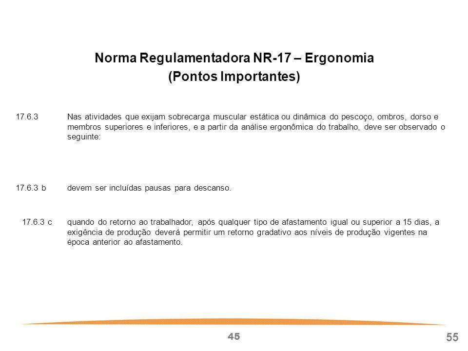 Norma Regulamentadora NR-17 – Ergonomia