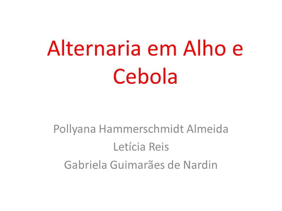 Alternaria em Alho e Cebola