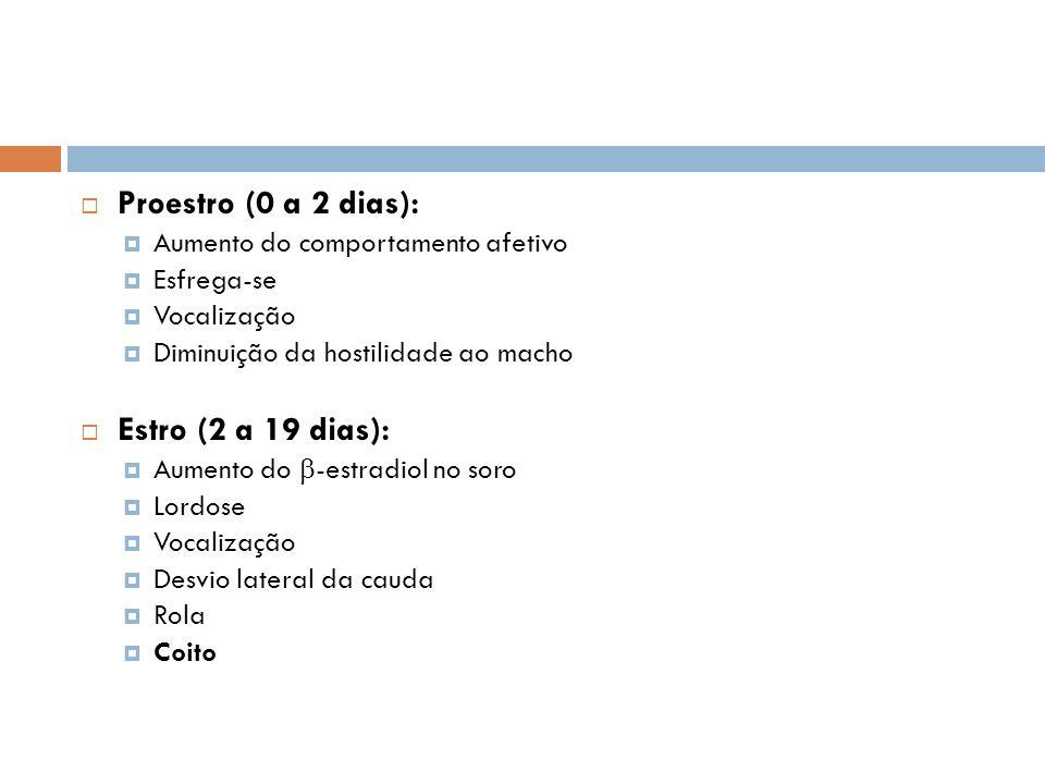 Proestro (0 a 2 dias): Estro (2 a 19 dias):