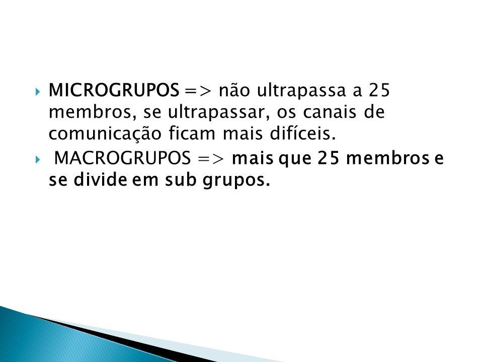 MICROGRUPOS => não ultrapassa a 25 membros, se ultrapassar, os canais de comunicação ficam mais difíceis.