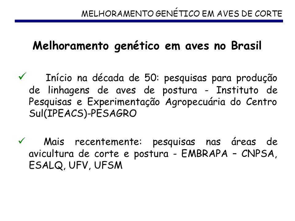 Melhoramento genético em aves no Brasil