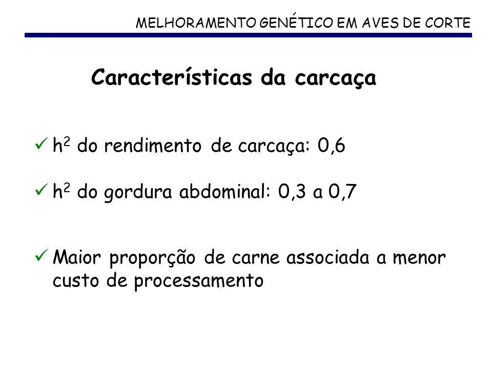 Características da carcaça