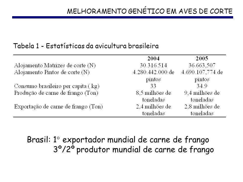 Brasil: 1° exportador mundial de carne de frango