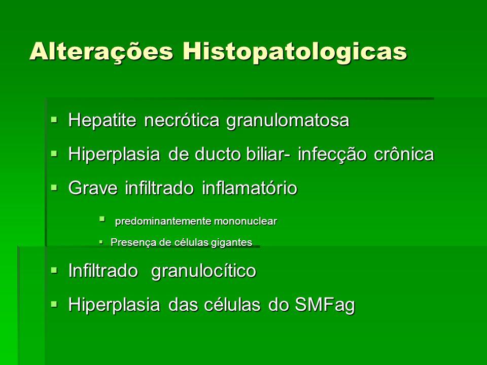 Alterações Histopatologicas