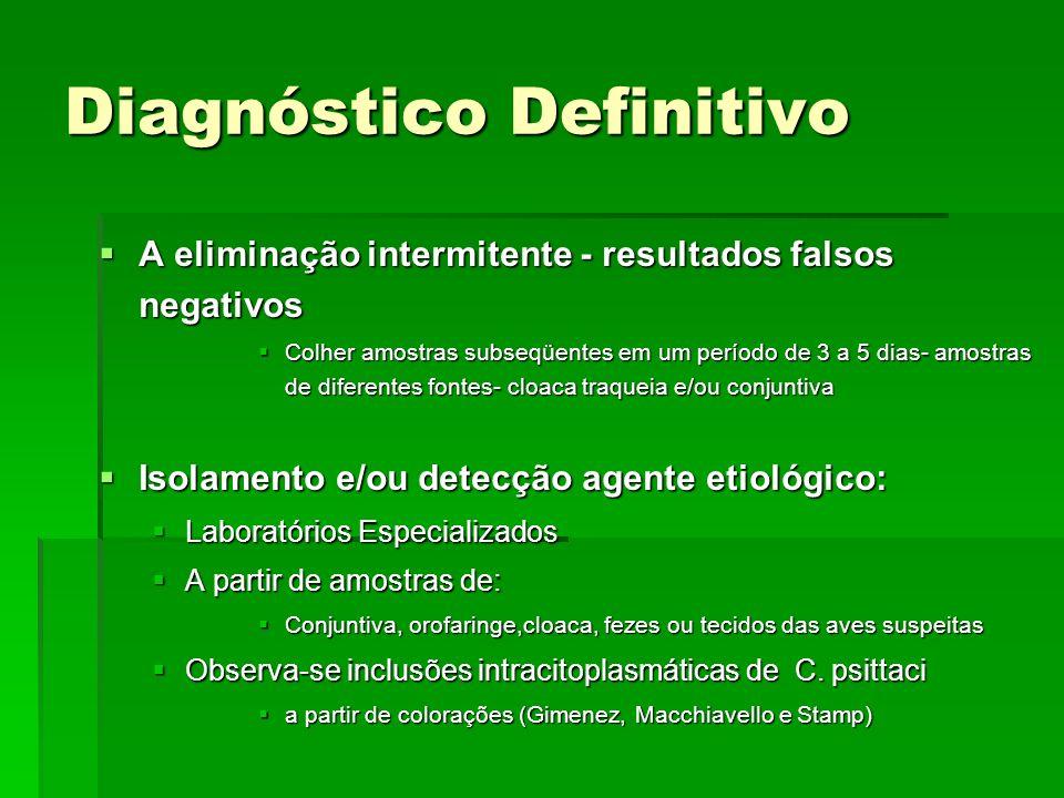 Diagnóstico Definitivo