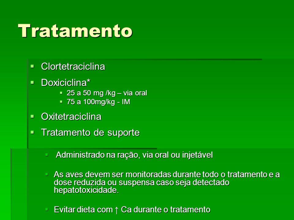 Tratamento Clortetraciclina Doxiciclina* Oxitetraciclina
