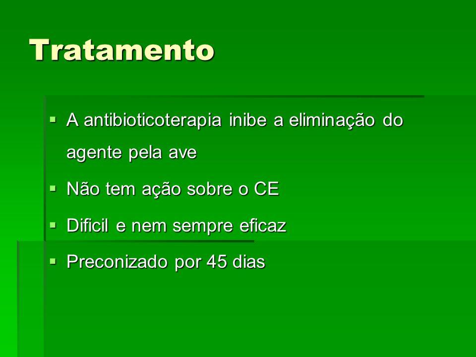 Tratamento A antibioticoterapia inibe a eliminação do agente pela ave